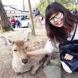 Selfie with one of the many deers at Nara Deer Park near Todaji Temple! Well worth the extra pitstop between Osaka and Kyoto even though it was a nightmare dealing with our luggages! #mitsuekitravels #wxdaphjapan #naradeerpark #naradeer #clozette