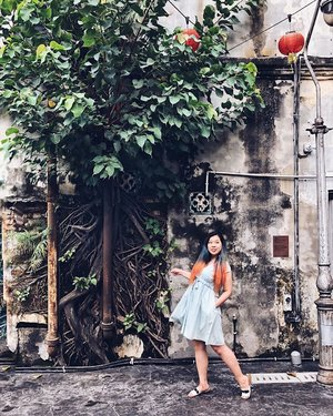 Really love how the tree roots gives texture to the wall and make a perfect backdrop for shoot! . Where have you guys been traveling for past long weekend? Im looking for a trip to waterfall and milkyway any suggestion? .  #blogger #fashionblogger #ootd #ootdfashion #bodypositive #clozette