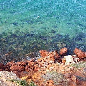 Love the clear #turquoise waters, I could look at it the whole day. Better still, swim in it. But it was super cold as I remembered! #throwback #weekend in #Perth, #Australia....#travelgram #traveladdict #travels #wanderlust #igtravel #travelphotography #igsg #passport #roundtheworld #traveltheworld #instagood #instatravel #adventures #vacation #holiday #sea #getlostnow #goplaces #clozette