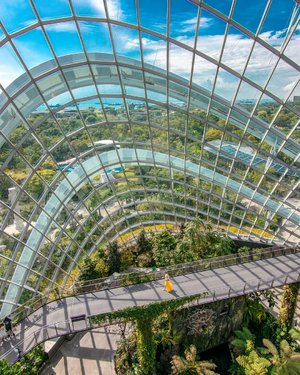 Discover Singapore 🇸🇬 l  Cloud Forest @Gardensbythebay⁣ ⁣ Taking in this view at the Cloud Forest. ⁣ ⁣ Did you know all of these are built on reclaimed land? Yes, all of the 250 acres of Gardens by the Bay is built on reclaimed land. ⁣ ⁣ Singapore is a tiny country, so tiny that you can hardly find it on the world map. We are so limited by our size that since 1822, we have been slowly doing land reclamation. However, we constantly face the challenge of rising sea levels as a result of global warming. As a fellow Singaporean, please do our part by reducing the use of plastic and air conditioning should not be lower than 25 degrees. ⁣ ⁣ ⁣ ⁣ ⁣ For Singapore 28 most instagram worthy places, check out the link to my Singapore blog post in my IG profile bio. ⁣ ⁣ For my Singapore content and most instagrammable places hashtag ➡️🇸🇬#FollowChertoSingapore⁣ ⁣ 📸Singapore Photographer @wilsonisalmostsexy⁣ .⁣ ⁣ ⁣