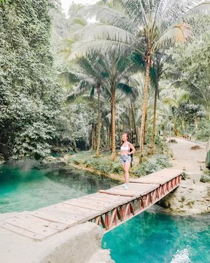 Bridge to Terabithia ✨ In need of a new adventure to plan and go to!! Any suggestions?☺️🌴